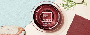 Pantone Institute Introducing Color of the Year--Marsala